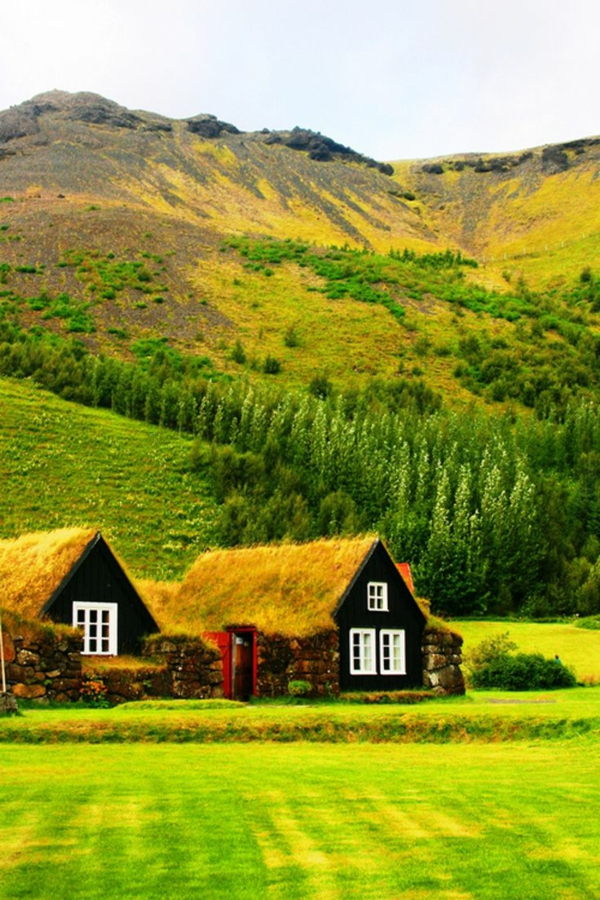 toit-végétal-petites-maisons-végétalisées