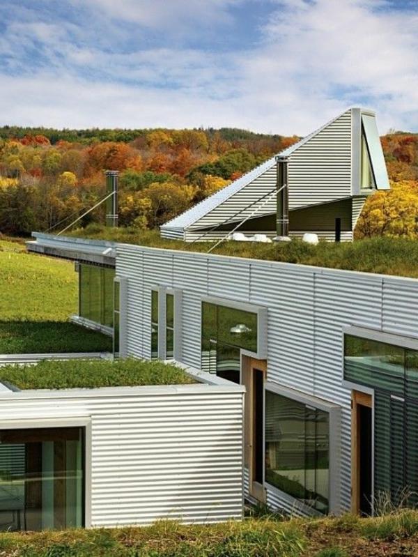 toit-végétal-pour-les-maisons-cubiques