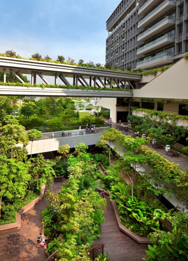 toit-végétal-toits-végétaux-du-monde
