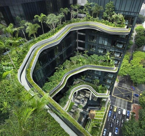 toit-végétal-toitures-urbaines-végétalisées