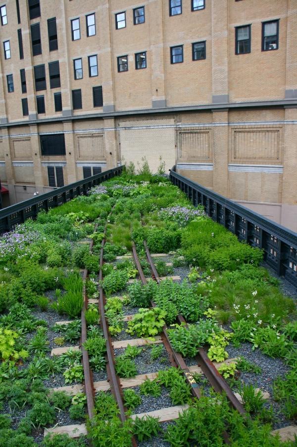toit-végétal-un-toit-artistique