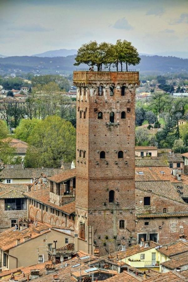 toit-végétal-une-tour-en-Italie