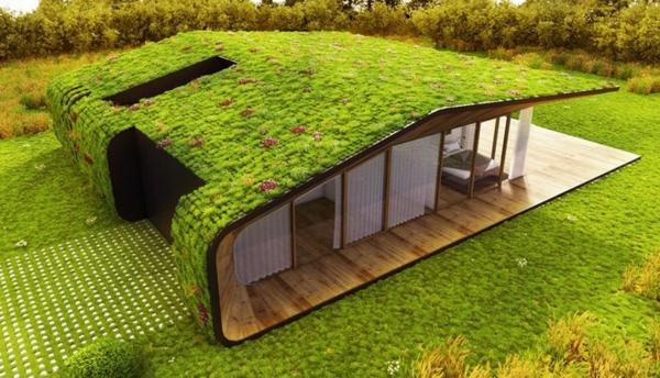 toit-végétal-unique-maison-à-toiture-verte