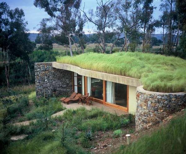 Le toit v g tal en 77 photos for Jardin villa ale aguascalientes