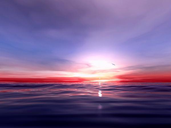 violet-couche-sur-la-mer