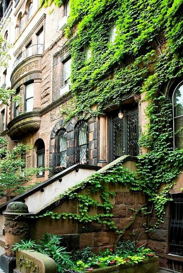 1-architecture-classique-terrasse-murs-en-lierre-vert-batiment-classique