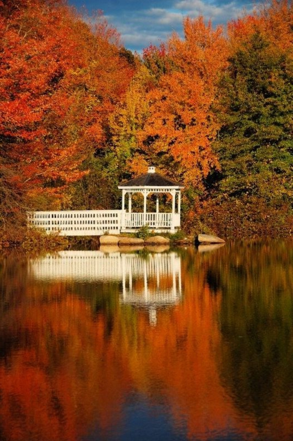 1-la-plus-belle-kiosque-jardin-pergola-en-bois-pavillon-de-jardin-automne