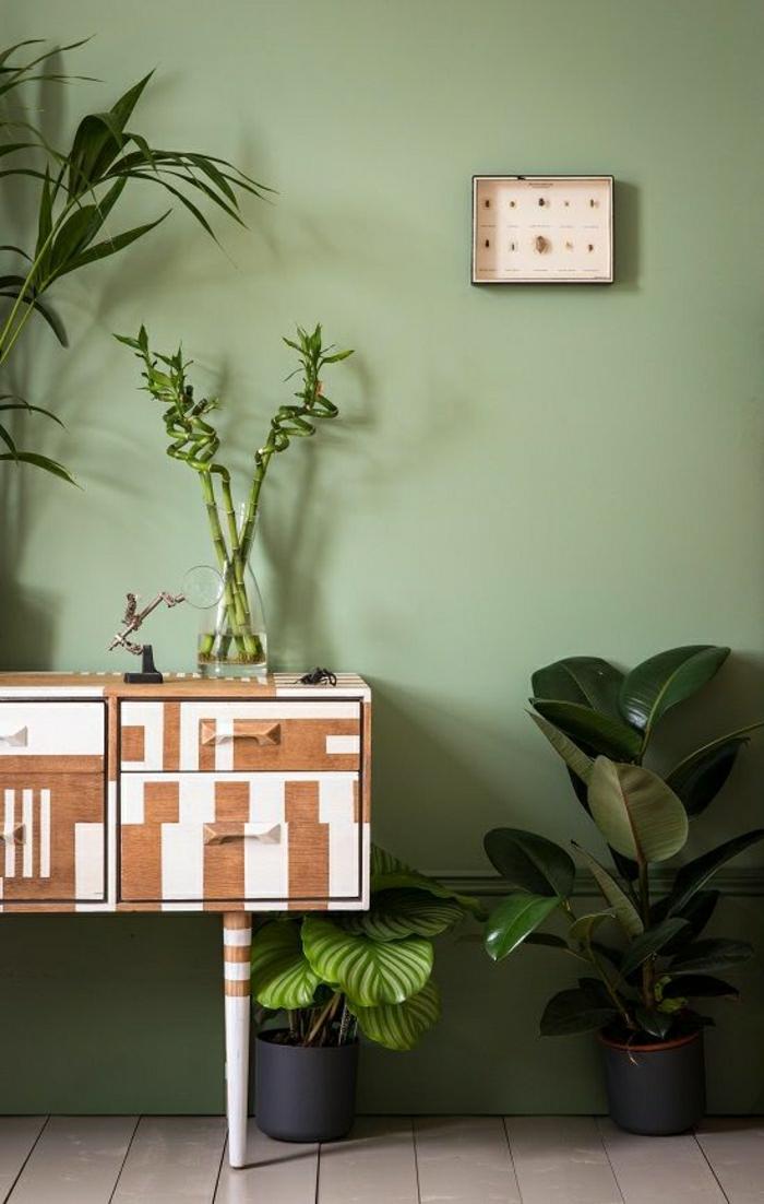 1-plantes-vertes-petit-meuble-d-entrée-sol-planchers-beige-murs-verts-meuble-en-bois