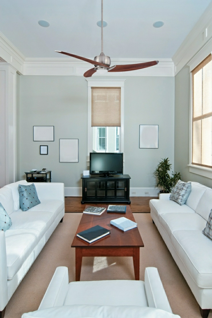 1-salon-confortable-ventilateur-de-plafond-murs-bleus-tv-plante-verte-table-basse-en-bois