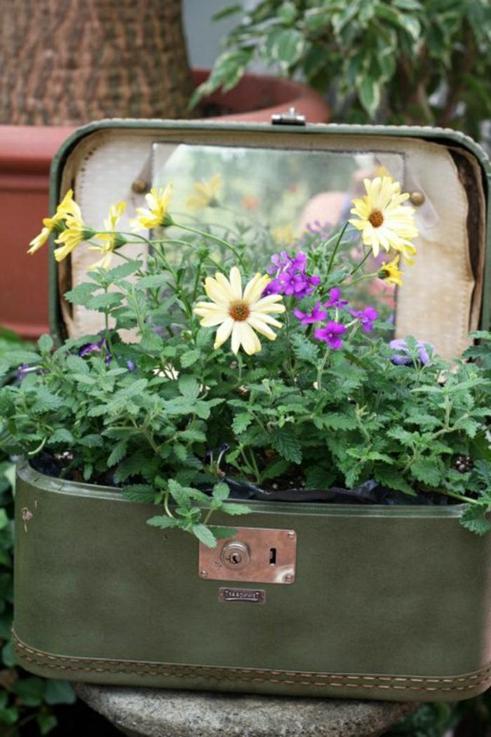 Déco-mignon-vintage-valise-plantes-vertes