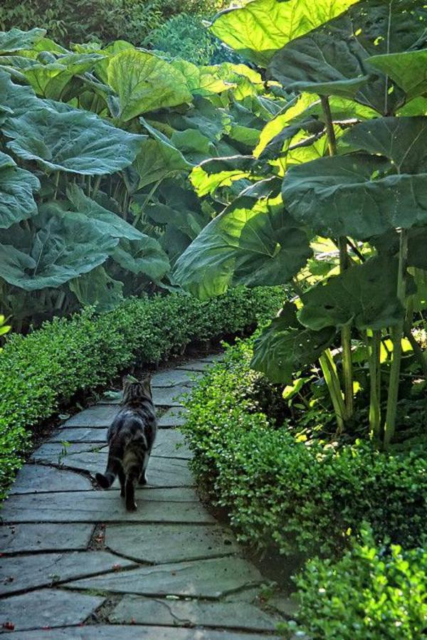 allées-de-jardin-allée-plongée-dans-le-vert