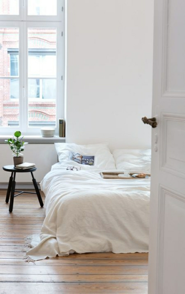 ambiance-cocooning-parquet-plancher-plante-verte-grand-fenetre-porte-blanche-deco-cocooning