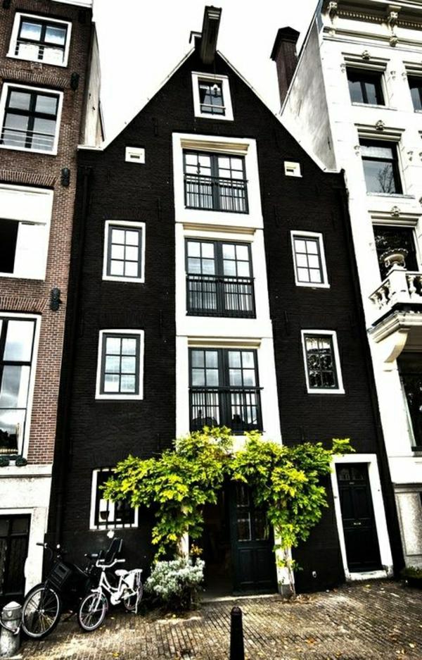 batiment-classique-architecture-art-classique-facade-baroque-arbres-rue