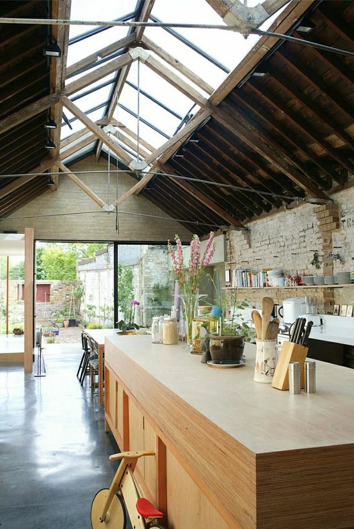 cuisine-salle-de-séjour-toit-en-verre-sous-pente-fleurs-bar-porte-coulissante