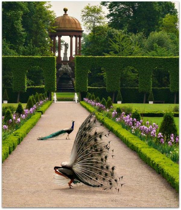 galets-décoratifs-gravier-pour-allée-jardin-luxe-animaux