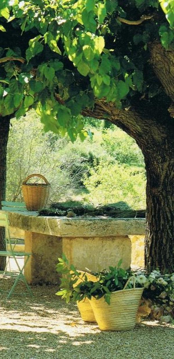 gravier-pour-allée-idée-jardin-moderne-vert-rustique-arbre