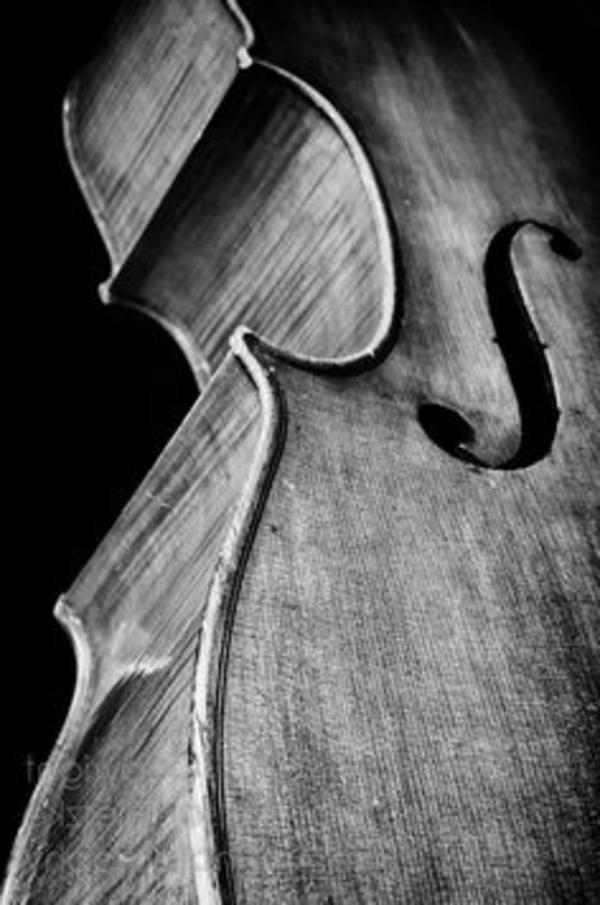la-danse-la-musique-violin-photographe-noir-et-blanc