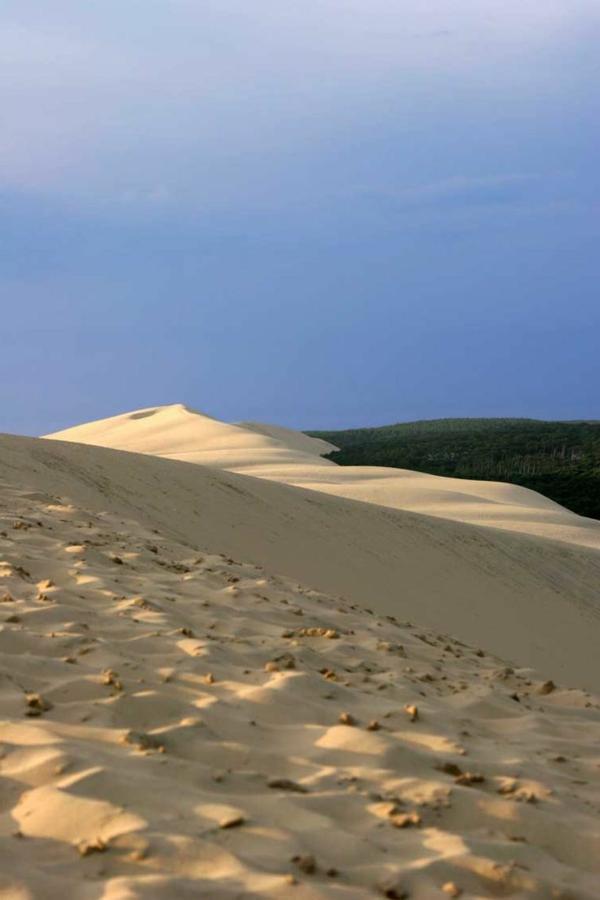 la-dune-du-pilat-paysage-magnifique
