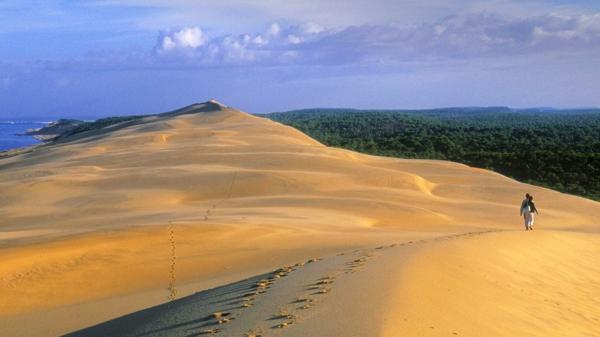 la-dune-du-pilat-un-desert-en-France