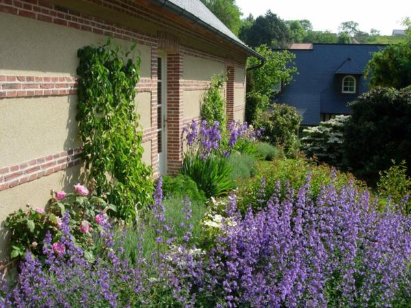 maison-jaune-fleurs-jardin