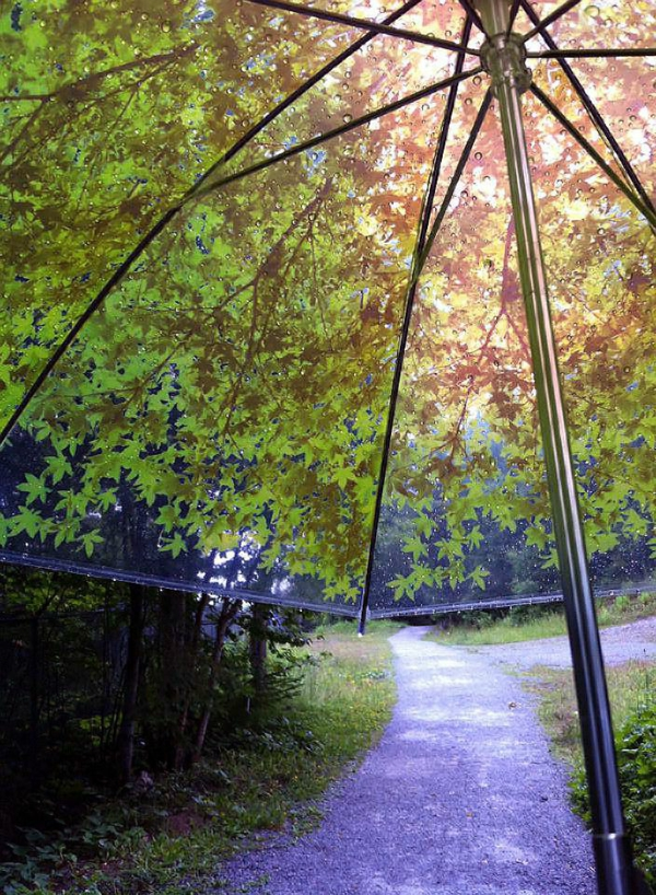 parapluie-transparent-aux-feuilles-verts