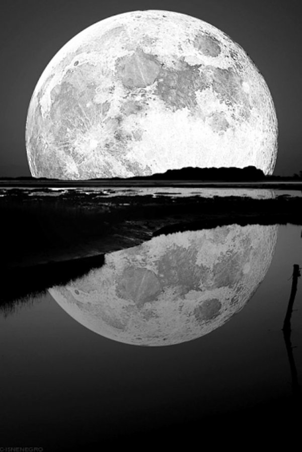 photo-la-nature-noir-et-blanc-artistique-photographie-la-lune