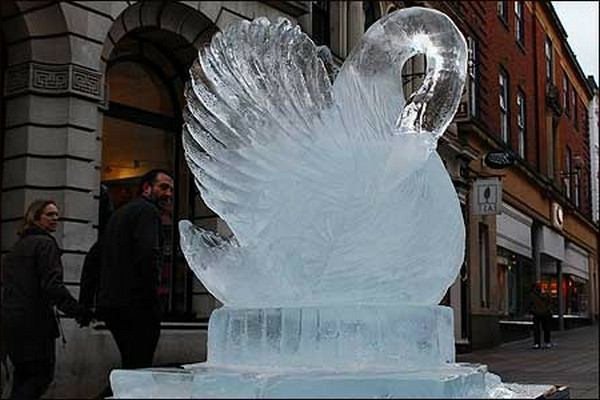 sculpture-de-glace-jolie-cygne