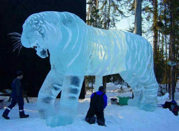 sculpture-de-glace-tigre