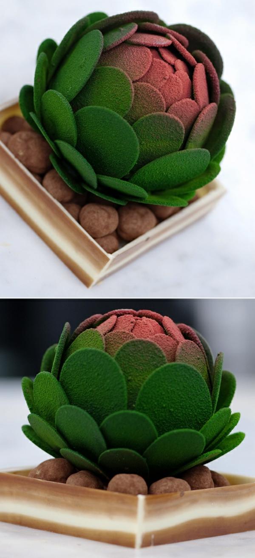sculpture-en-chocolat-un-cactuse-parfait-de-chocolat