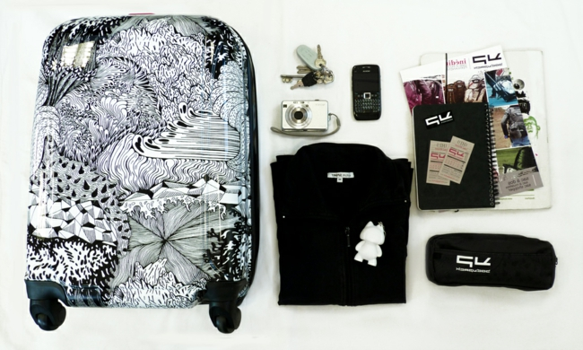 taille-valise-cabine-aéroplane-blanc-et-noir