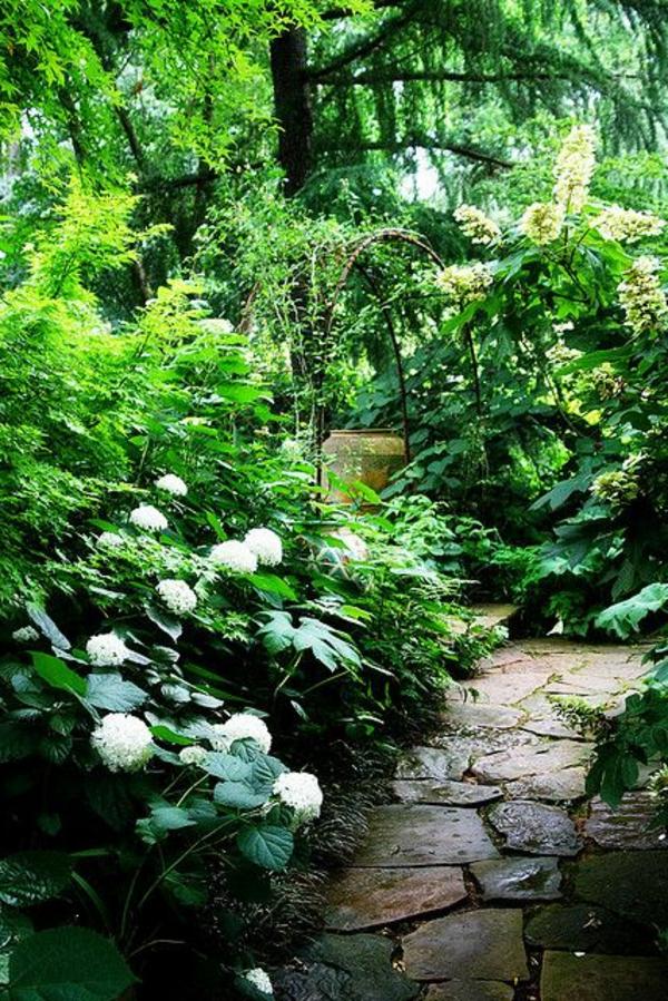 une-belle-allée-avec-gravier-plantes-vertes