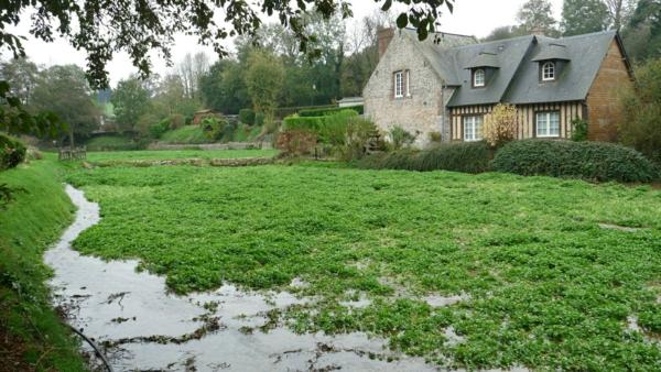 une-maison-à-pierre-Veules-les-Roses-jardin-fleuve