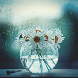 Le vase boule - petit objet avec de grandes idées