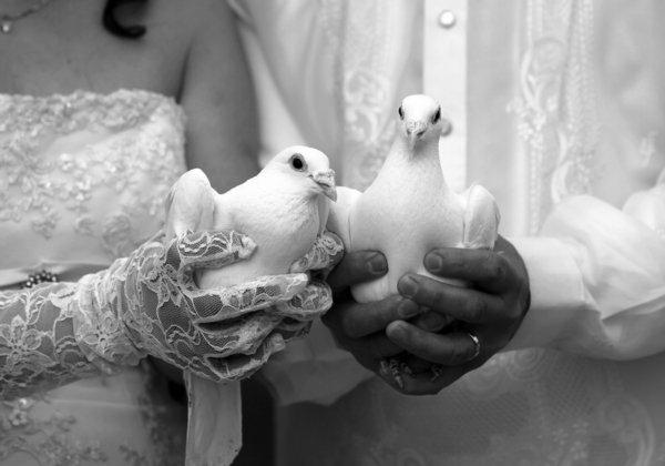 vintage-mariage-oiseaux-blanc-idée-photo-noir-et-blanc