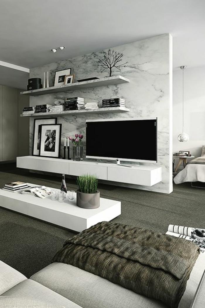 étagère-blanc-mur-motifs-imprimés-meubles-basse-en-bois-salon-blanc-gris-plante-verte