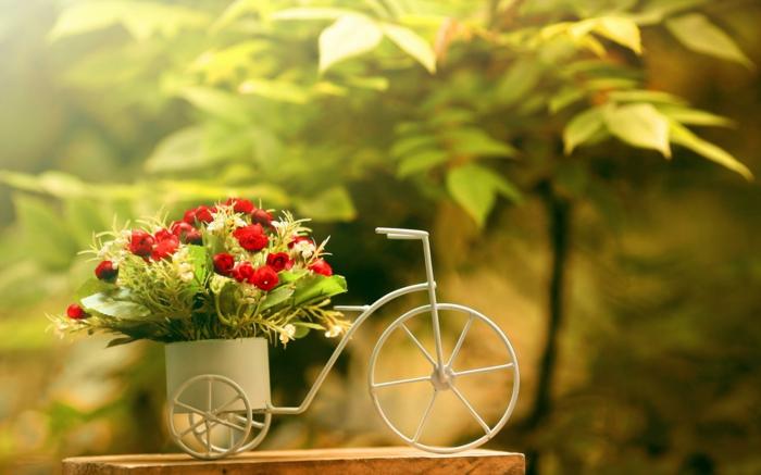 pot-de-fleur-exterieur-poterie-extérieur-petite-bicyclette-fleurs-rouges