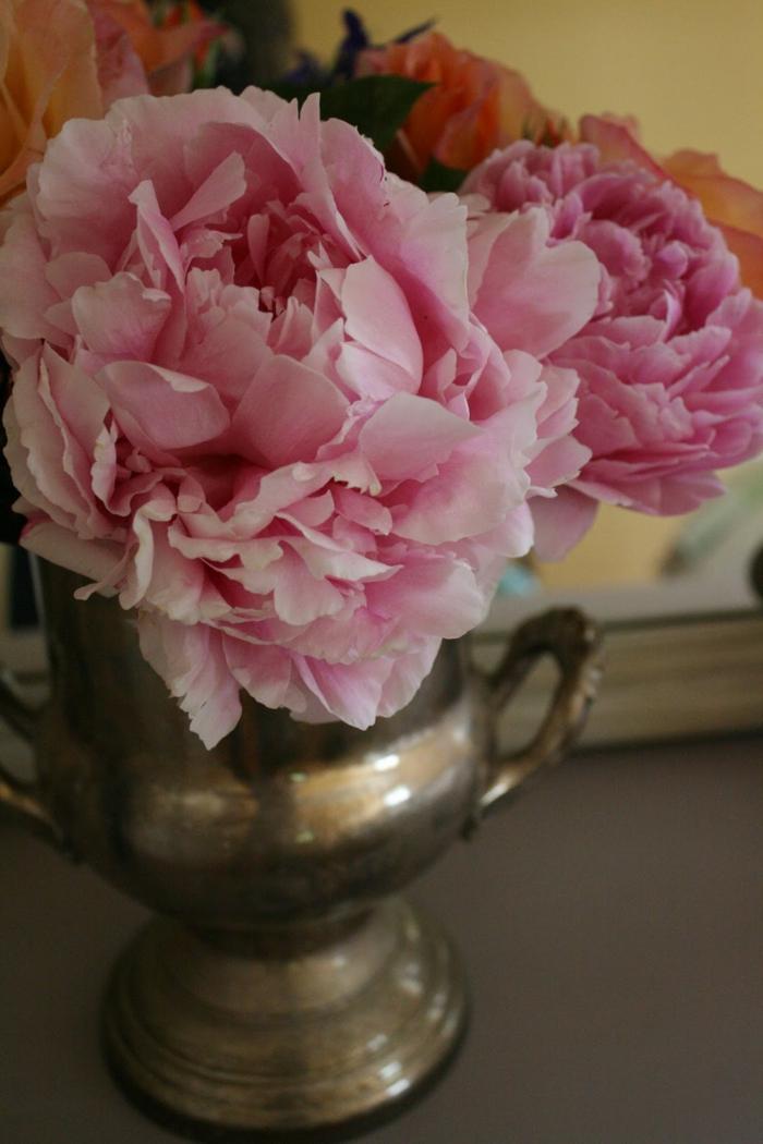 Bouquet-pivoine-fleur-jolie-déco-idée-rose