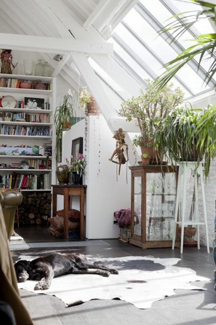 Fenêtres-de-toit-velux-lucarne-plantes-vertes