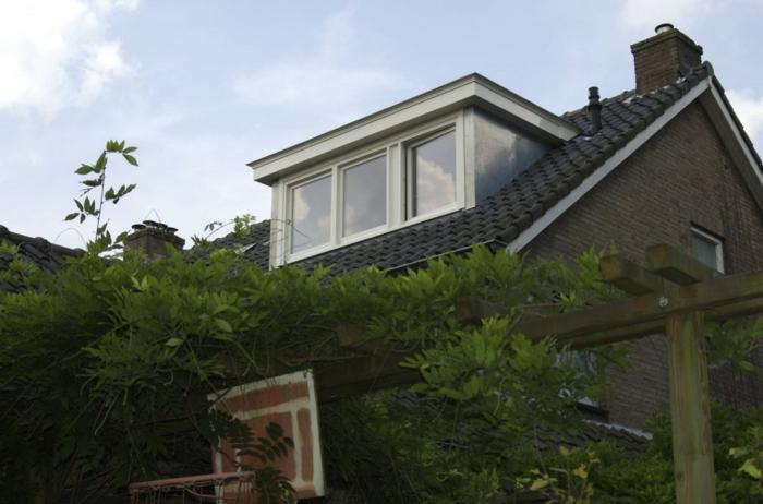 Idée-extérieur-maison-lucarne-plantes-vertes