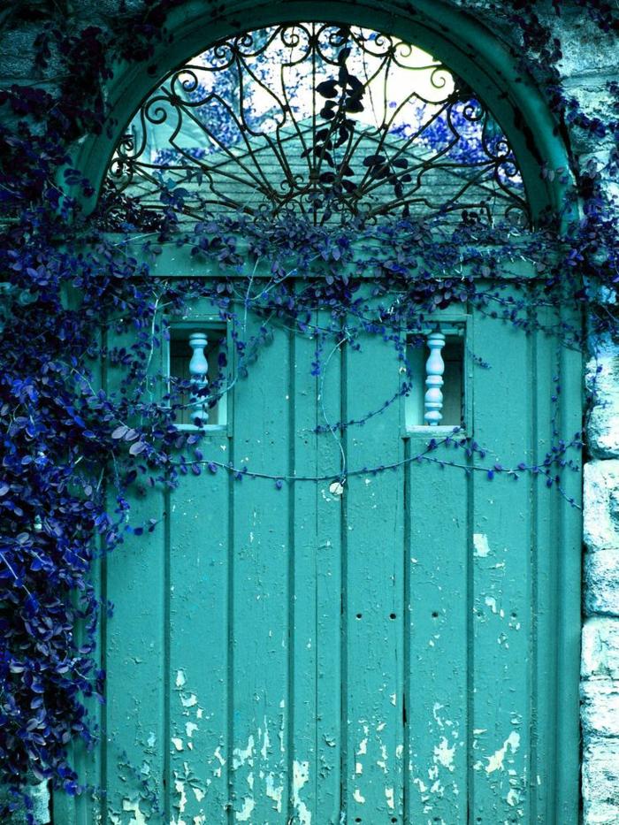 Porte-d-entrer-aigue-marine-couleur-plante-entrée