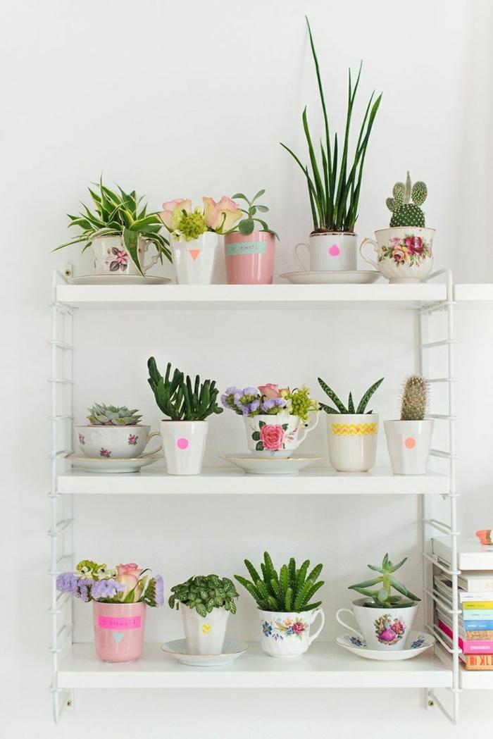 Théière-bouilloire-décoration-rangement-pot-plante-verte
