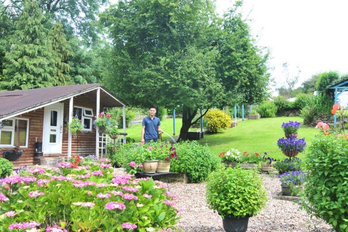 abri-de-jardin-chalet-en-bois-fleurs-petite-maison-fonctionnel