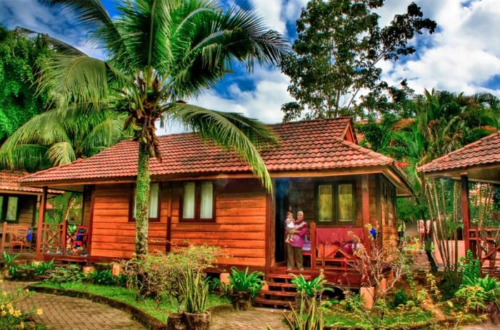 chalet-de-jardin-pas-cher-tropique-palmier
