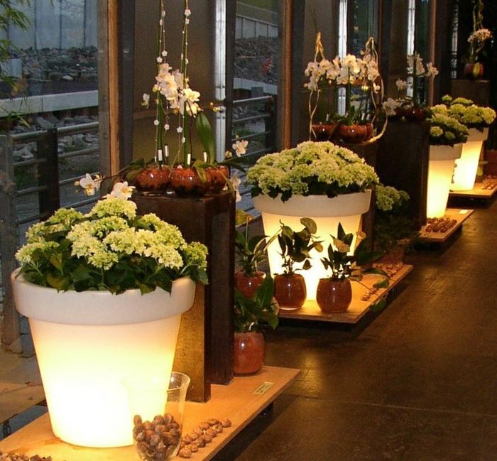 eclairage-jardin-pot-de-fleur-lumineux-magasin