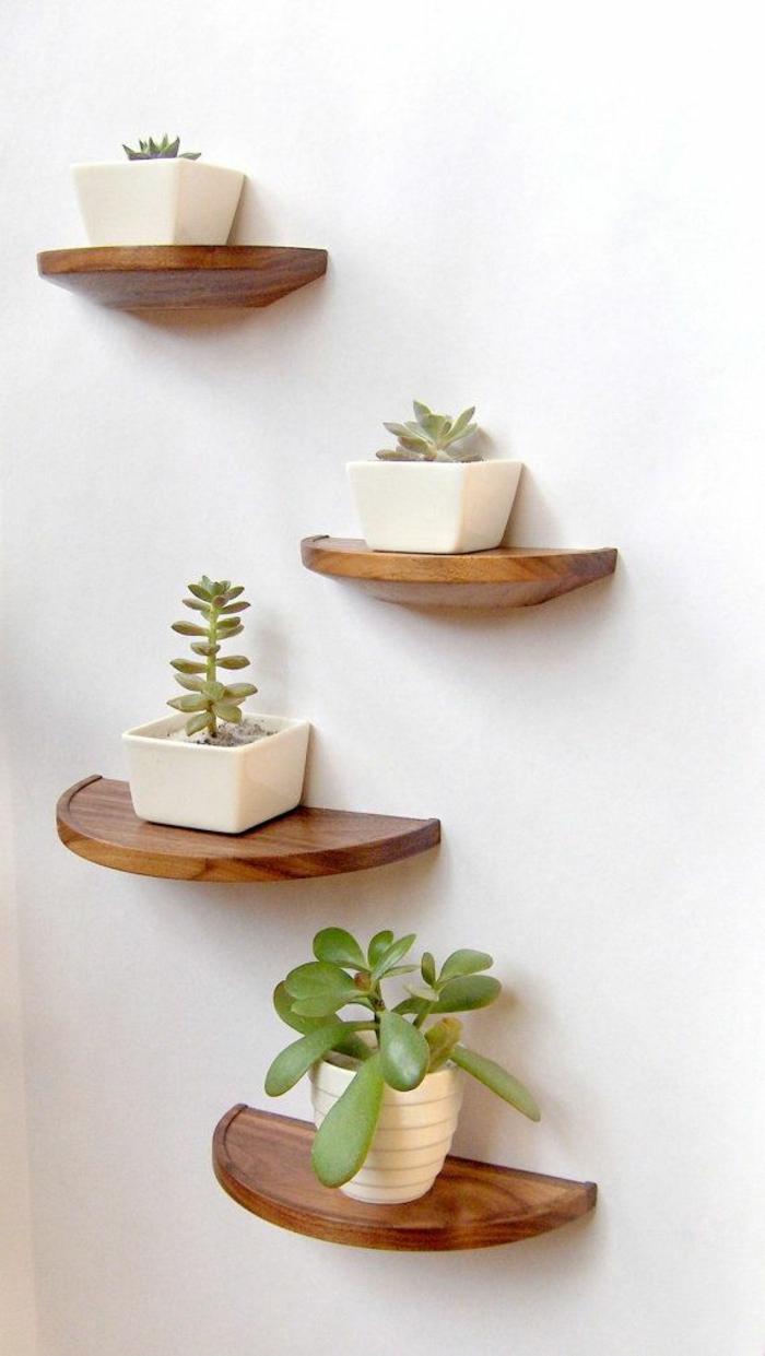 etagere-en-bois-plantes-vertes-décoration-avec-plantes-murales-mur-beige-idee