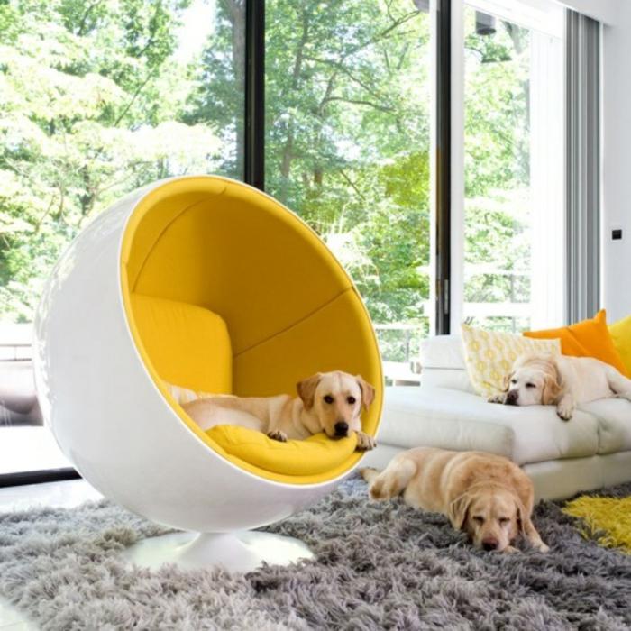 fauteuil-boule-tapis-gris-moelleux-et-chiens-dormants