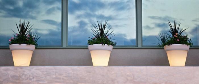 idée-de-jardin-pot-lumineux-petites-plantes-vertes