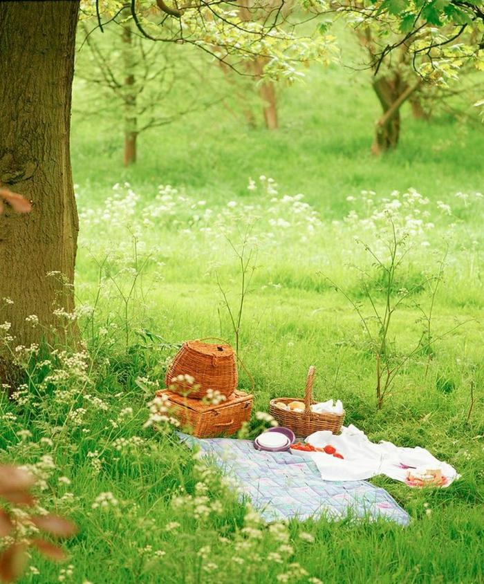 idee-pique-nique-le-panier-jardin-belle-nature