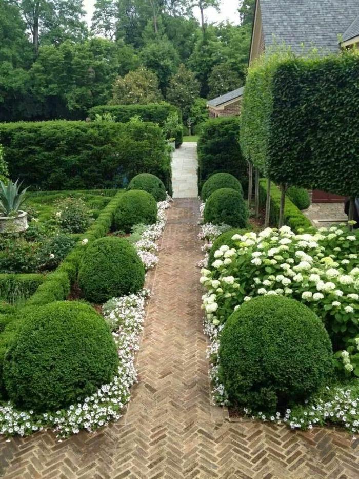 jardin-paysager-allée-et-taille-de-buissons