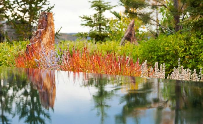 jardin-paysager-architecture-du-jardin